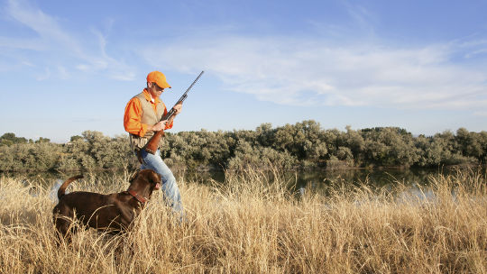 Planning for Landowners, Sportsmen, Sportswomen, and Gun Owners